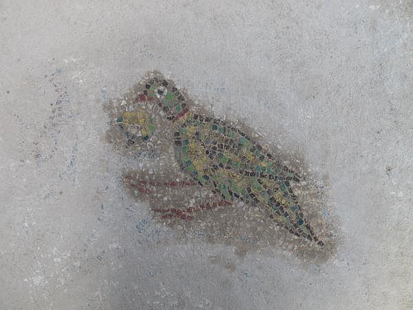 2021/10/troya-oren-yerinde-helenistik-ve-roma-donemine-ait-mozaik-bulundu-bf480b435bf4-1.jpg