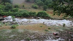 Sel Felaketinde Mahsulleri Zarar Gören Çiftçilere Müjdeli Haber