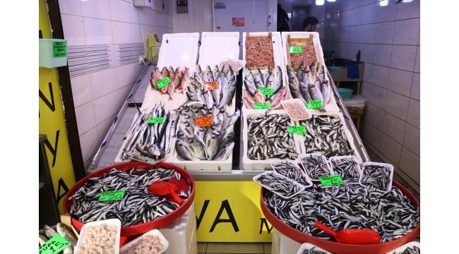 Hamsi Güney Marmara'daki balıkçıların yüzünü güldürmeye başladı