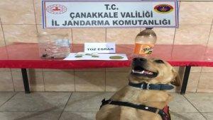 Çanakkale-Ezine'de uyuşturucu operasyonu: 2 gözaltı