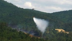 Çanakkale'de ormanlık alanda çıkan yangın söndürüldü