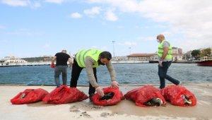 Çanakkale'de deniz ve kıyı temizliği etkinliği